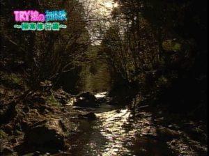 TBS 噂の東京マガジン TRY娘19